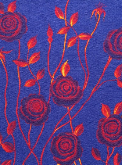 Mysterious Rose on Dark Blue background